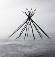 Antti Saraja: Kotapuut tuiskussa
